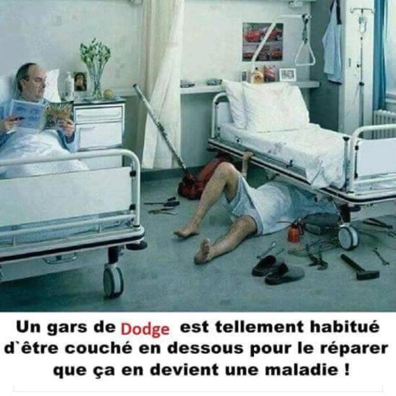Photo drôle part 2.... - Page 27 Dodge_11