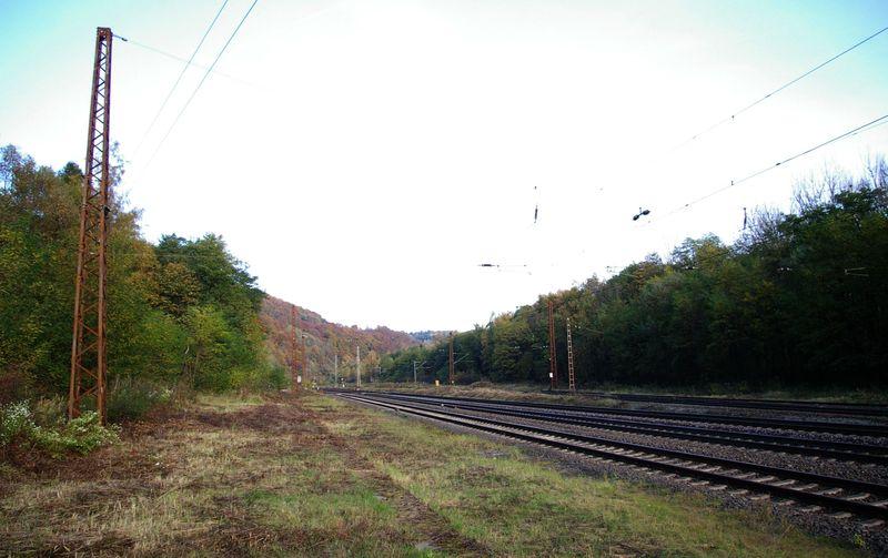 Was die Züge so bewegt ... - Seite 7 Elm_bb11
