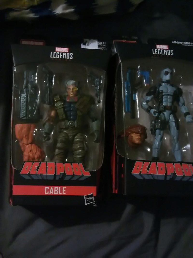 Marvel Legends (Toybiz & Hasbro) Thread Img_2031