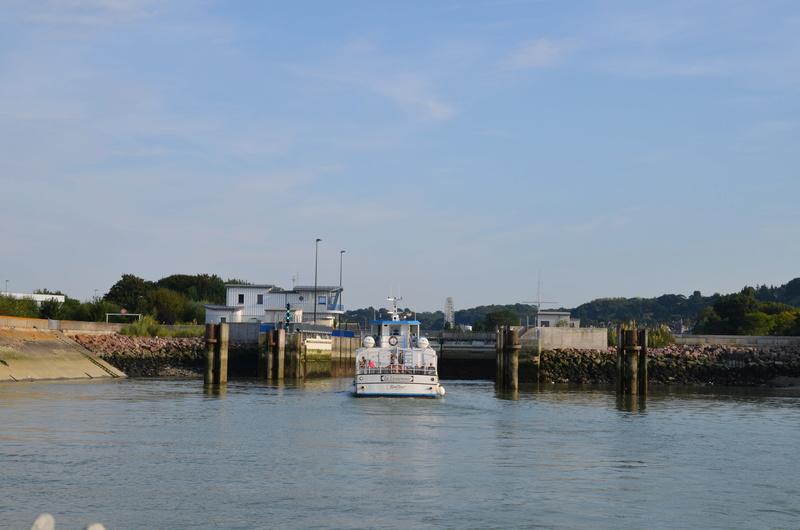 Le port de Honfleur - Page 3 Dsc_2816