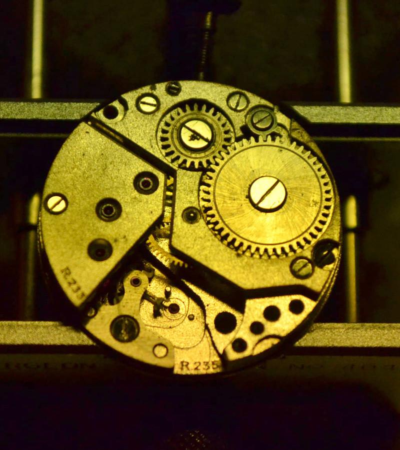 mystérieuse Lip R233  de Noel Dsc_1517