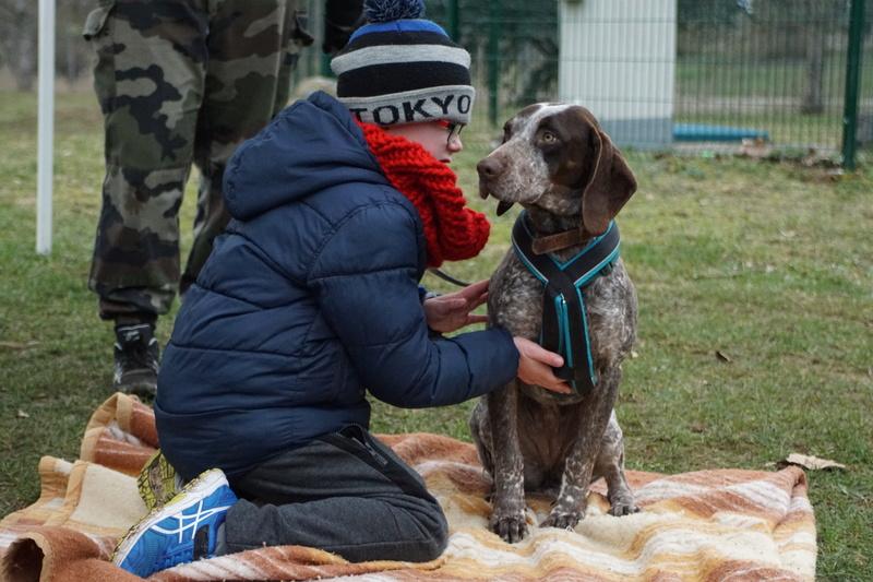 LOOMIS (chienne braque croisée) Dsc00918