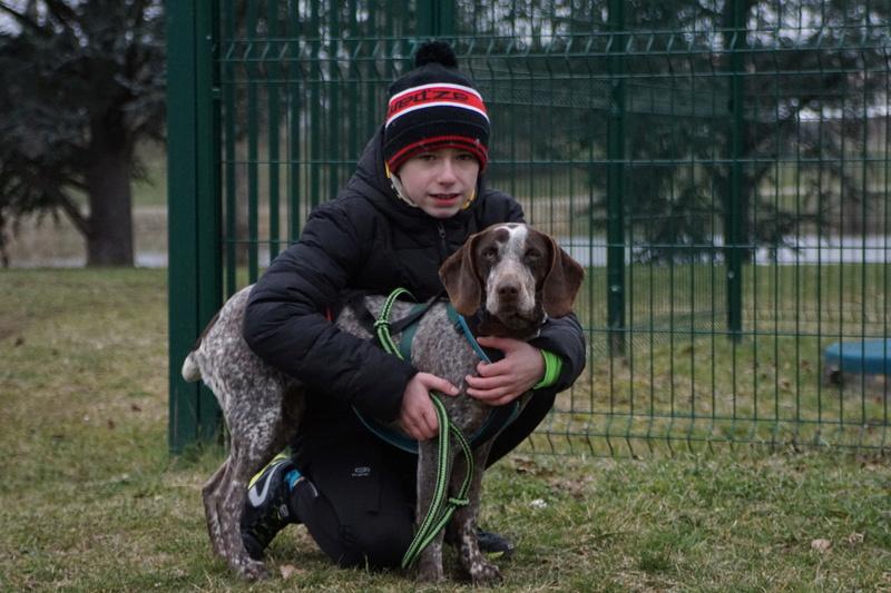 LOOMIS (chienne braque croisée) Dsc00921
