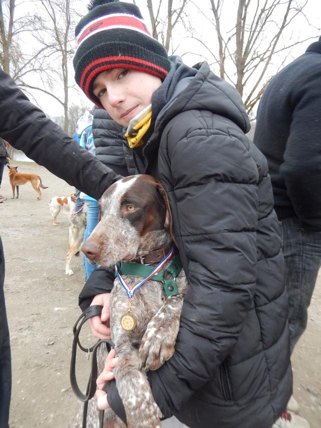 LOOMIS (chienne braque croisée) Dscn5915