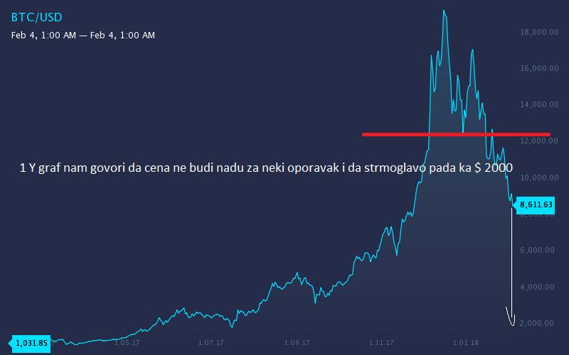 BTC Analiza 1y11