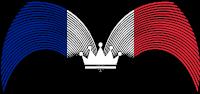 France Stock flag
