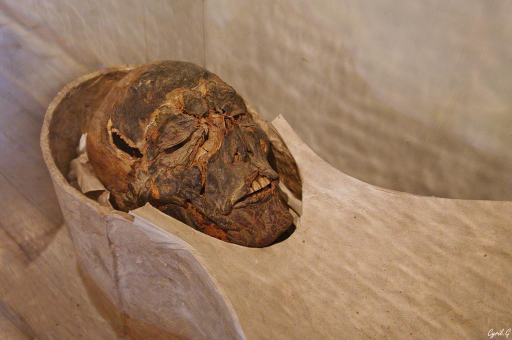 La momie Imgp3411