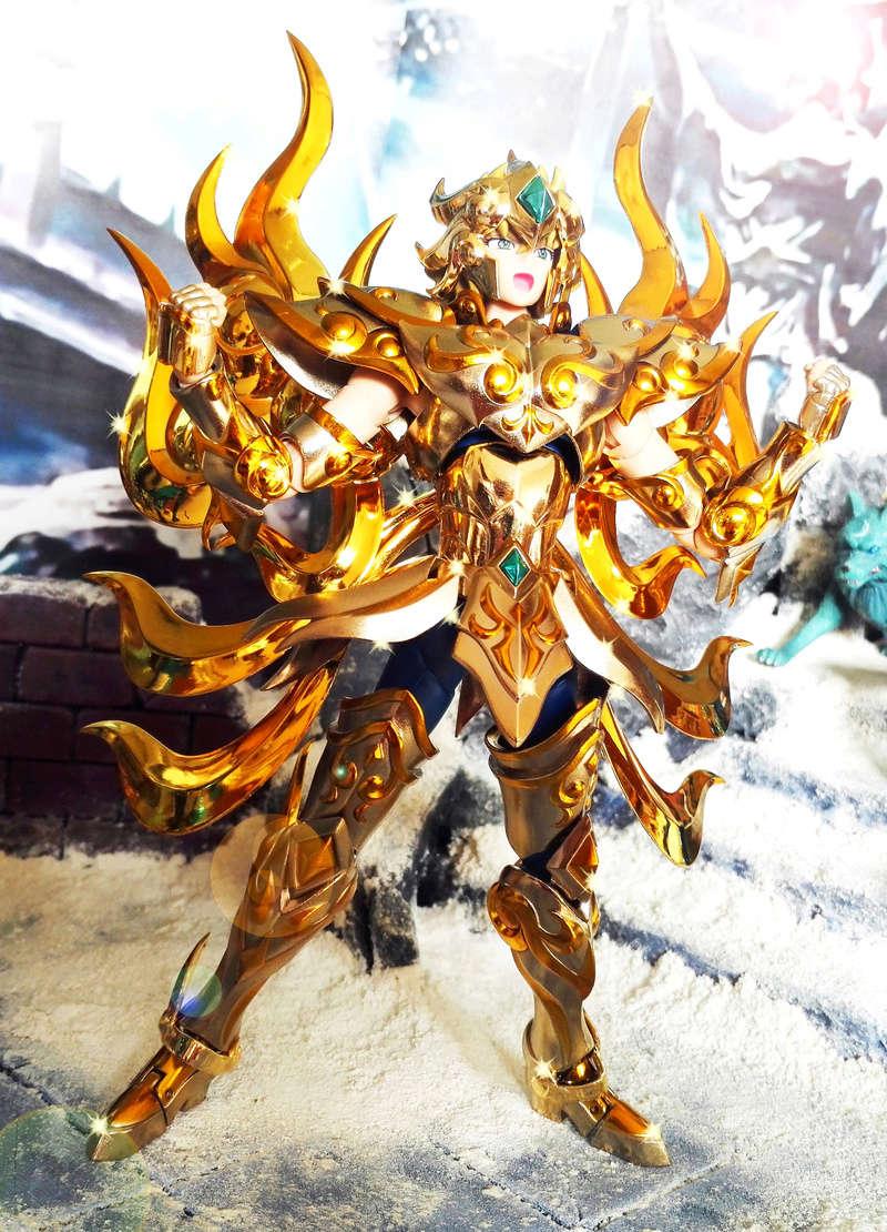 Les photos/montages de votre Myth Cloth EX du Lion Soul of Gold (God Cloth) - Page 4 Img_2010