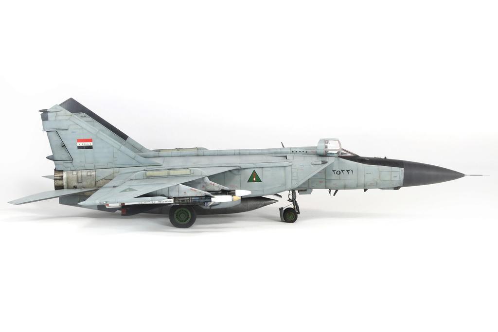 iraq - 1/48 Mig-25PDS Iraq - Terminé!! Img_2056