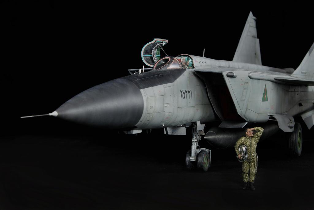iraq - 1/48 Mig-25PDS Iraq - Terminé!! Img_2078