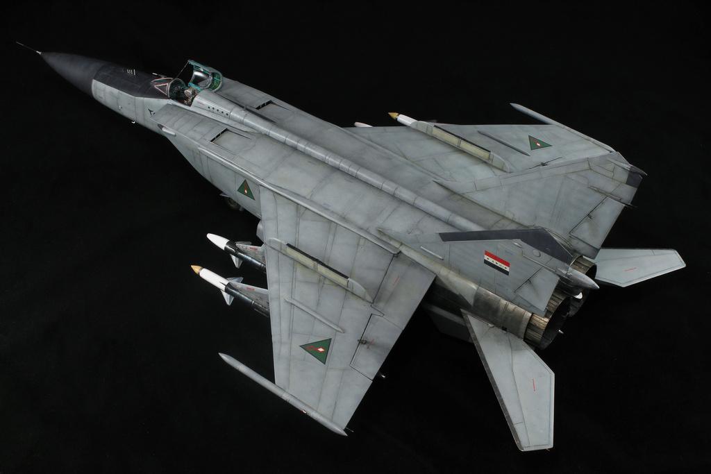 iraq - 1/48 Mig-25PDS Iraq - Terminé!! Img_2084