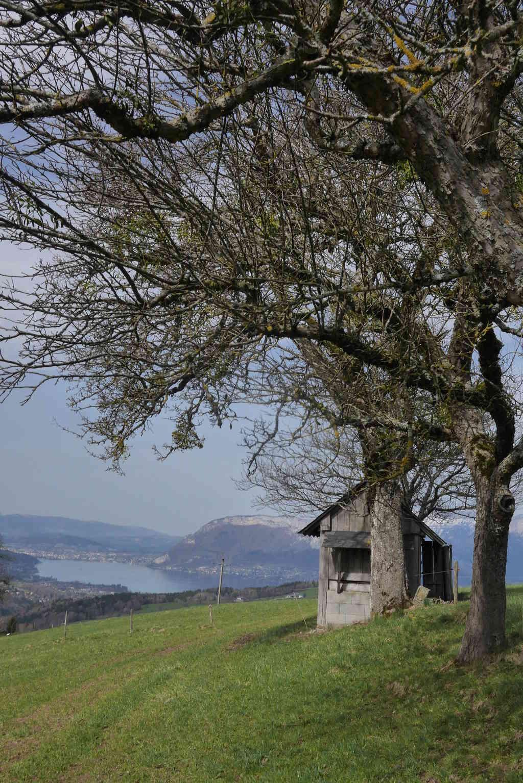 En ballade au Col de Leschaux au dessus du Lac d'Annecy Col_de12