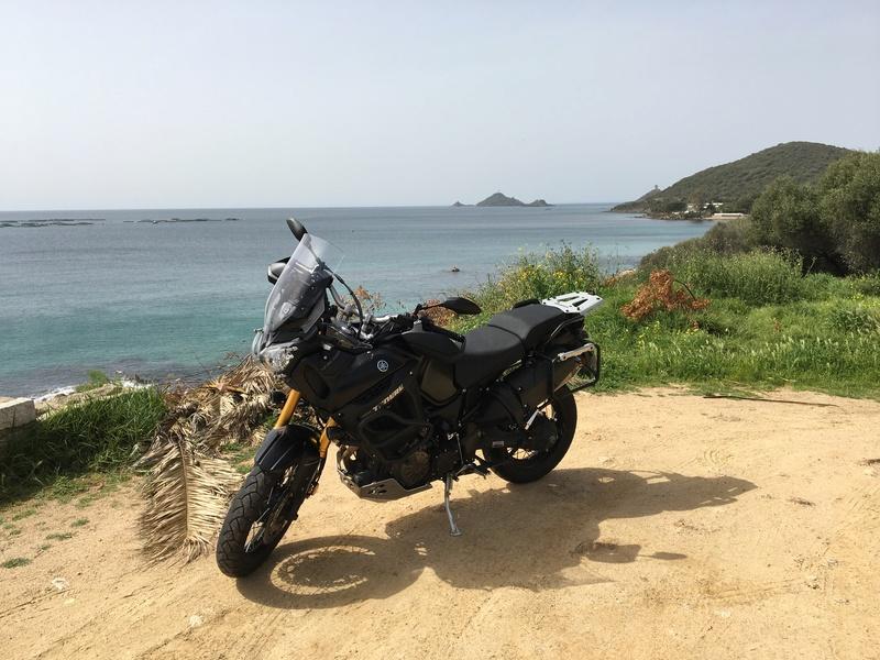 Un bonjour de Corse Img_0716