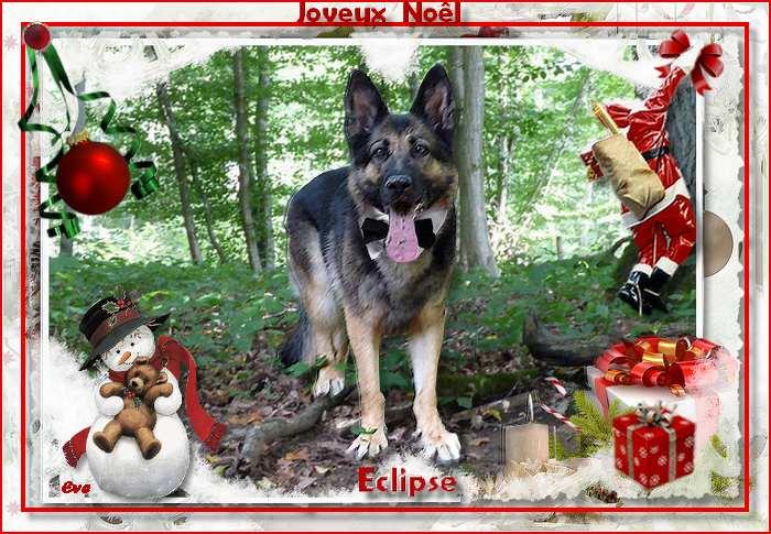 Concours photos de Noel . Eclips21