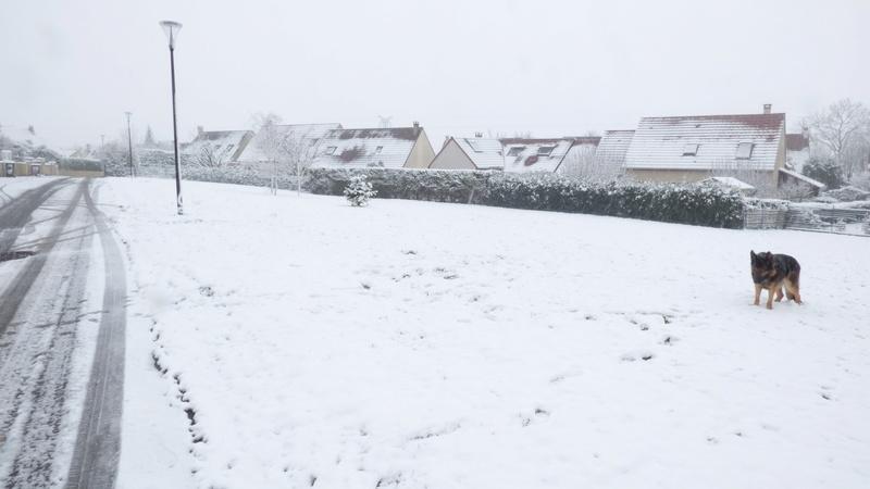 Après la pluie, la neige ! Loulou32