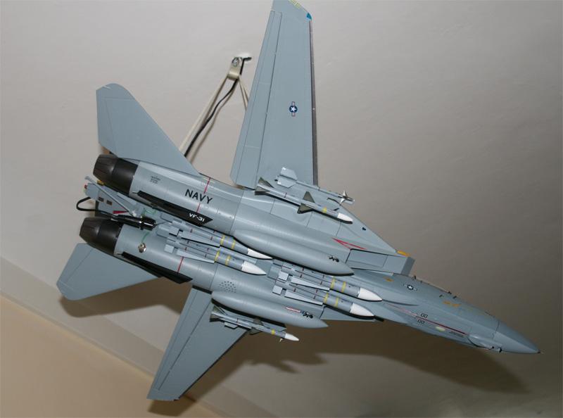 F-14 Tomcat - Pagina 3 Img_2111