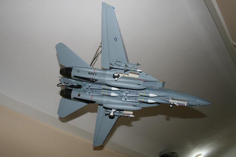 F-14 Tomcat - Pagina 3 Img_2114