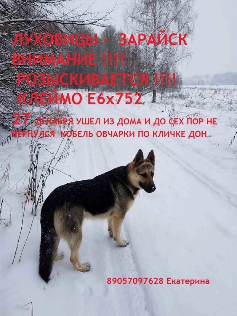 ПОТЕРЯШКИ НАШИХ  КРОВЕЙ 0-02-012