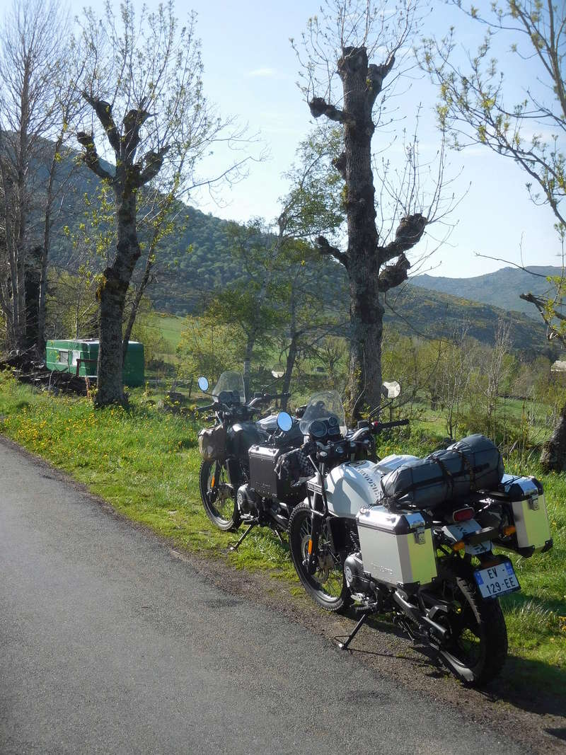2 ours en himalayan Dscn8427