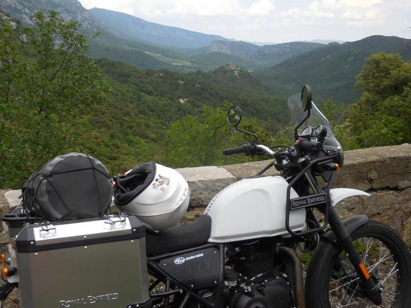 2 ours en himalayan Dscn8429