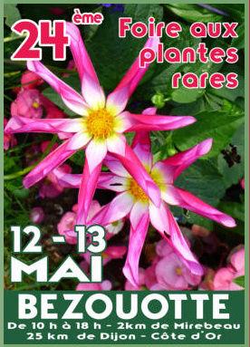 FOIRE AUX PLANTES RARES DE BEZOUOTTE (DEPT 21) Foire_10