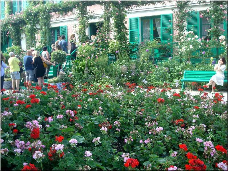 Giverny : des couleurs, des senteurs, des fleurs ! 127