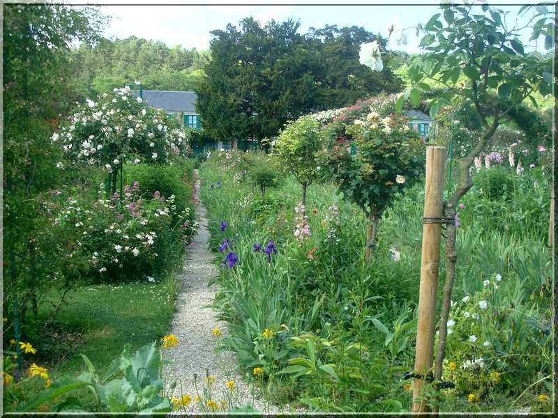 Giverny : des couleurs, des senteurs, des fleurs ! 1616