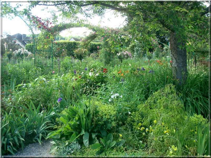 Giverny : des couleurs, des senteurs, des fleurs ! 1813