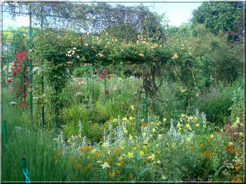 Giverny : des couleurs, des senteurs, des fleurs ! 1913