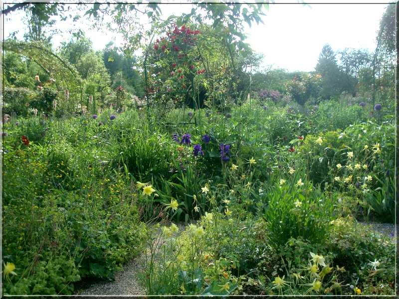 Giverny : des couleurs, des senteurs, des fleurs ! 2013