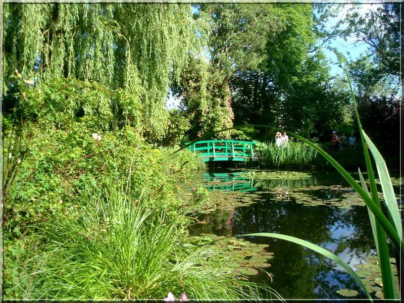 "Le ""Jardin d'Eau"" second jardin de Claude Monet 2612"
