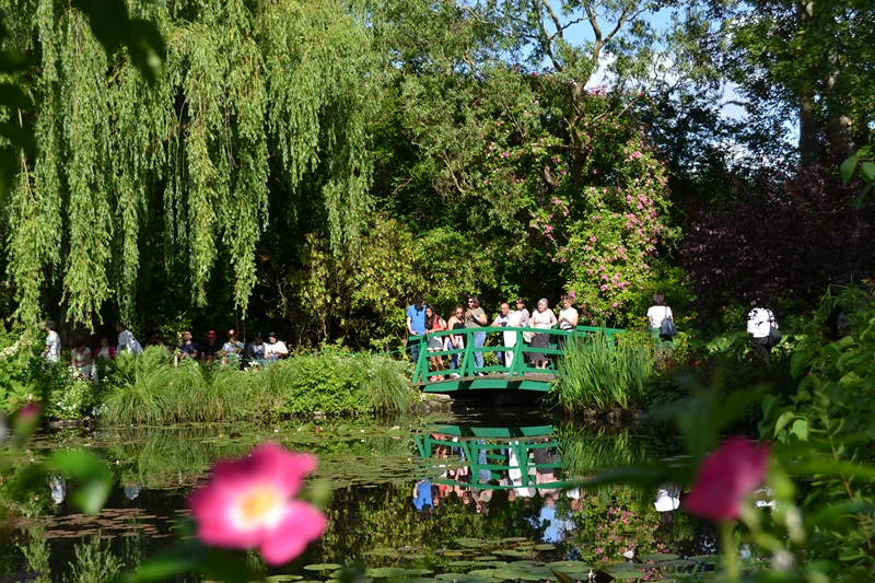 "Le ""Jardin d'Eau"" second jardin de Claude Monet 2912"
