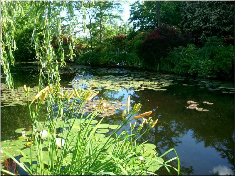"Le ""Jardin d'Eau"" second jardin de Claude Monet 3012"