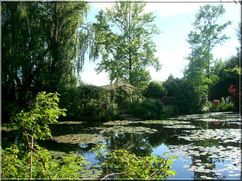 "Le ""Jardin d'Eau"" second jardin de Claude Monet 3211"