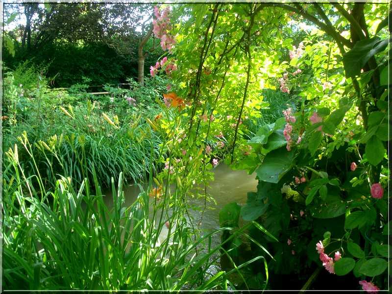"Le ""Jardin d'Eau"" second jardin de Claude Monet 3311"