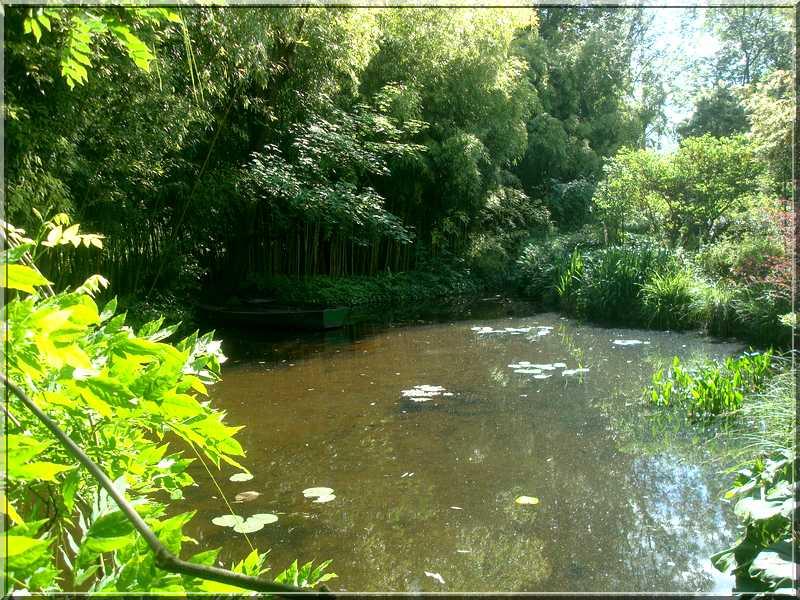 "Le ""Jardin d'Eau"" second jardin de Claude Monet 3611"