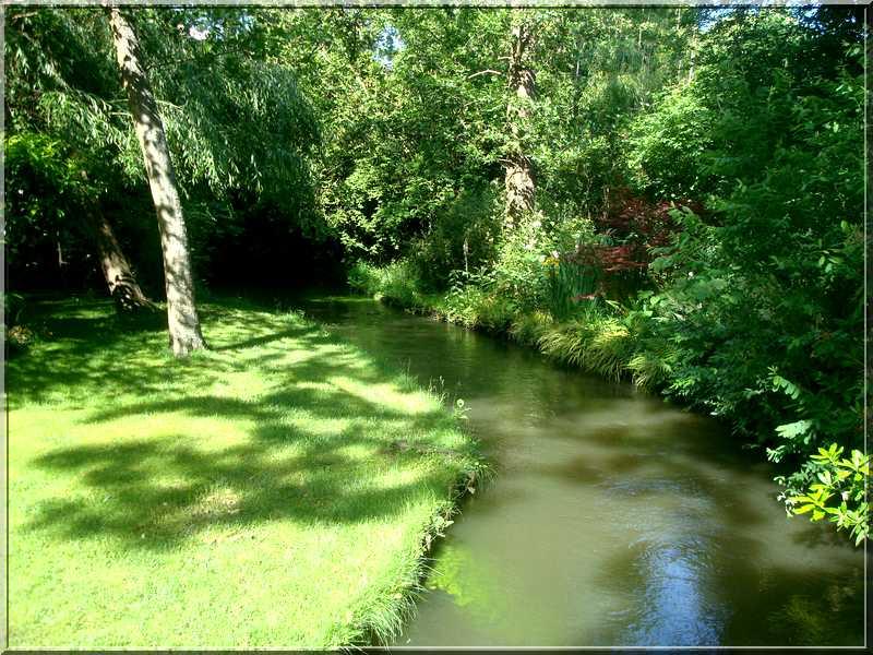 "Le ""Jardin d'Eau"" second jardin de Claude Monet 3912"