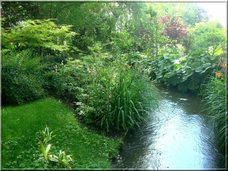 "Le ""Jardin d'Eau"" second jardin de Claude Monet 4112"