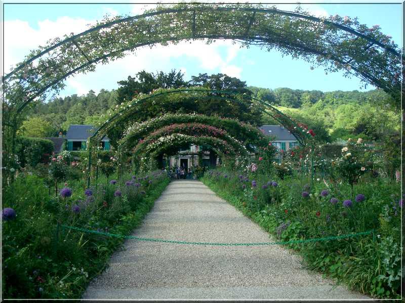 Giverny : des couleurs, des senteurs, des fleurs ! 426