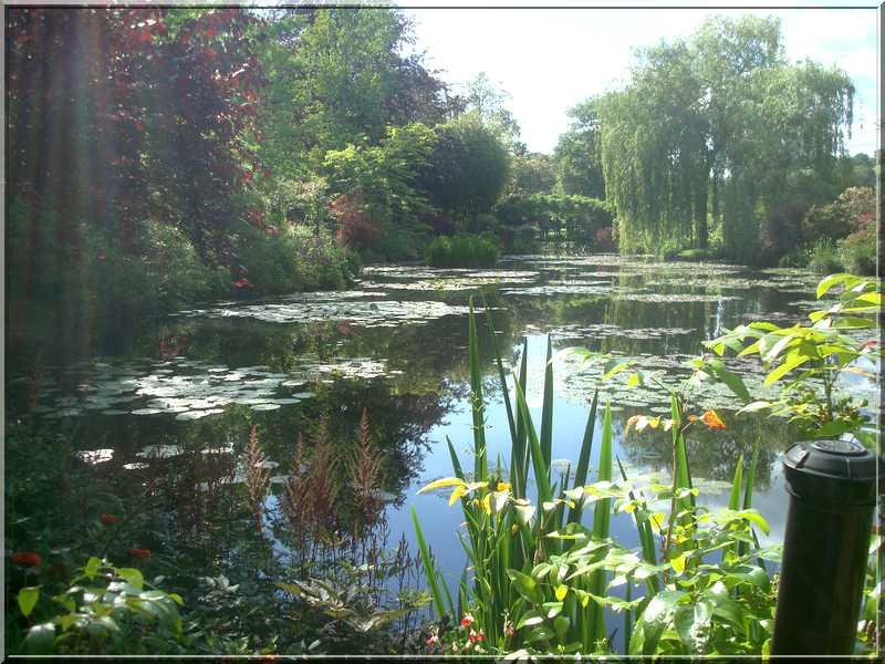 "Le ""Jardin d'Eau"" second jardin de Claude Monet 4312"