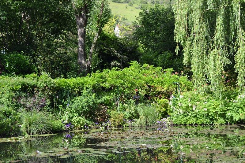 "Le ""Jardin d'Eau"" second jardin de Claude Monet 4611"