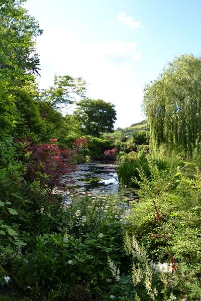 "Le ""Jardin d'Eau"" second jardin de Claude Monet 5011"