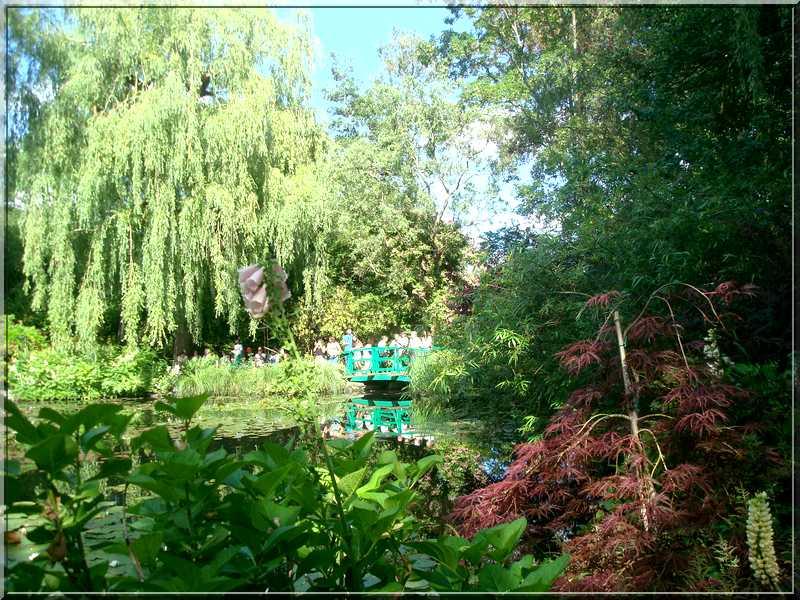 "Le ""Jardin d'Eau"" second jardin de Claude Monet 5211"