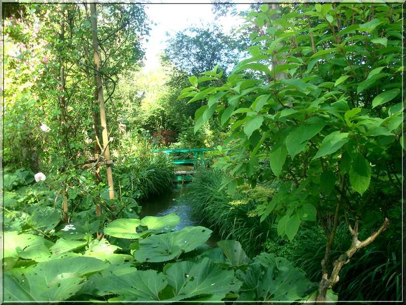 "Le ""Jardin d'Eau"" second jardin de Claude Monet 5311"