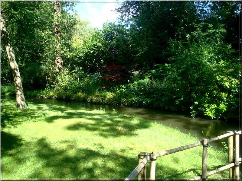 "Le ""Jardin d'Eau"" second jardin de Claude Monet 5611"