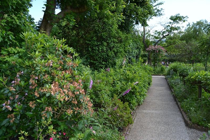 Giverny : des couleurs, des senteurs, des fleurs ! 820