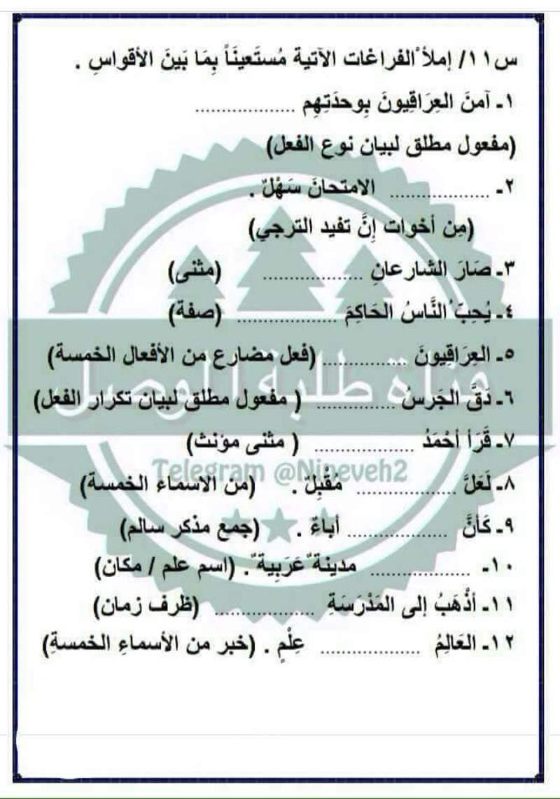 مرشحات ومراجعة المركزة لمادة اللغة العربية لصف السادس الابتدائي لامتحان يوم السبت 119
