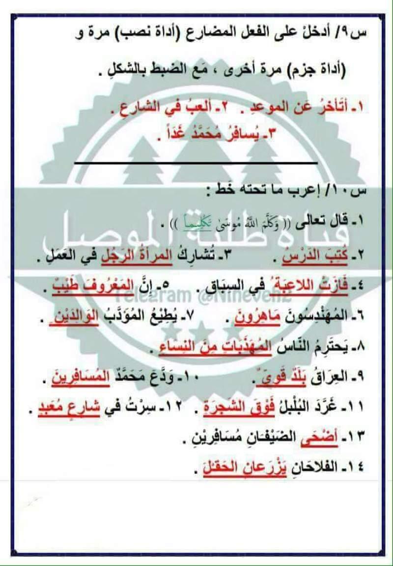 مرشحات ومراجعة المركزة لمادة اللغة العربية لصف السادس الابتدائي لامتحان يوم السبت 219