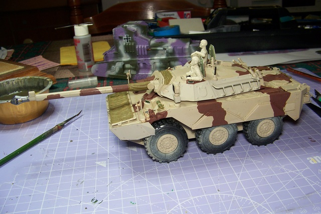 AMX 10 RC ,Direction Bagdad ! (Tiger models 1/35)Fini - Page 2 2367310