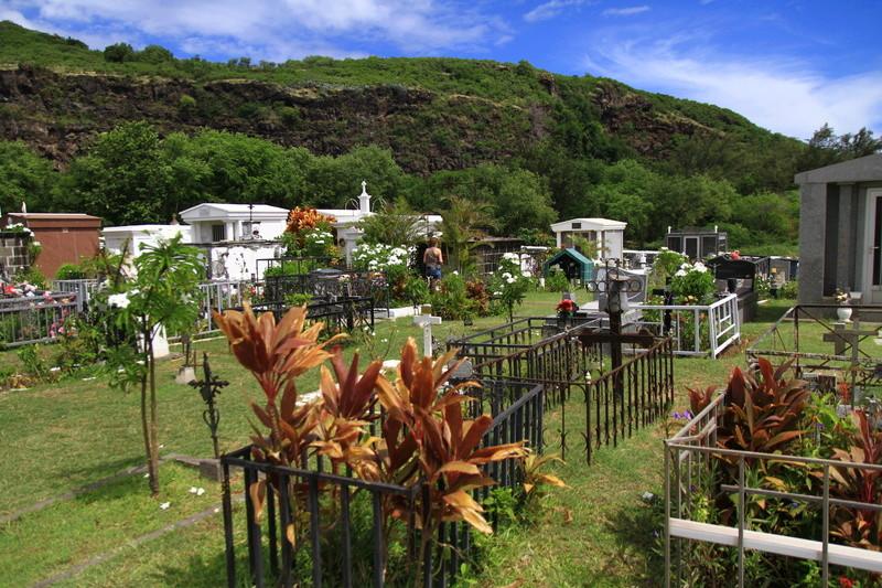 [fil ouvert] Balade à la Réunion  - Page 3 Img_8316